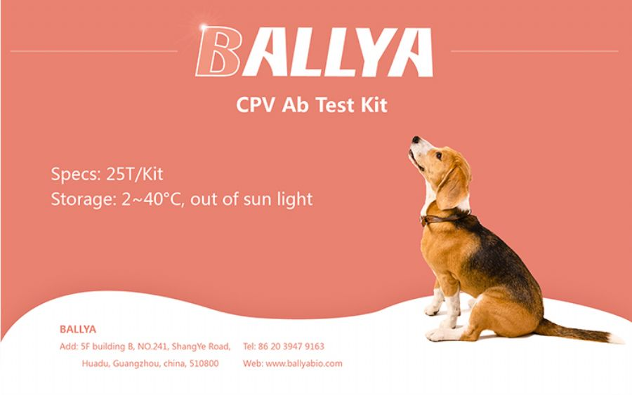 CPV Ab Quantitative Test Kit
